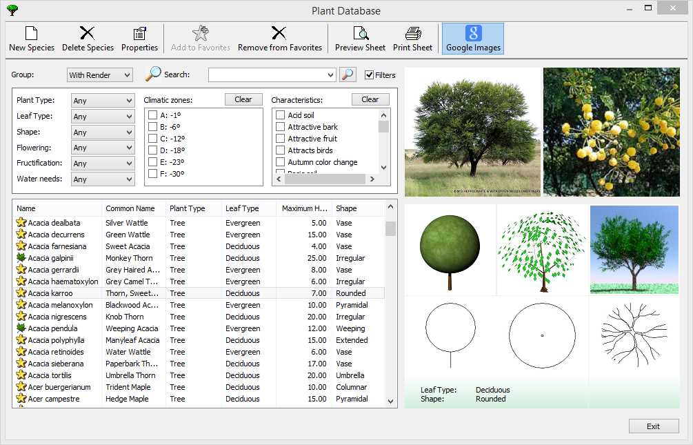 Database di piante 0