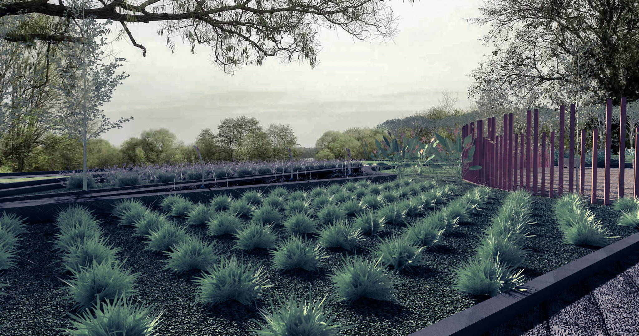 Lands Design project of a garden with small organized plants and trees.