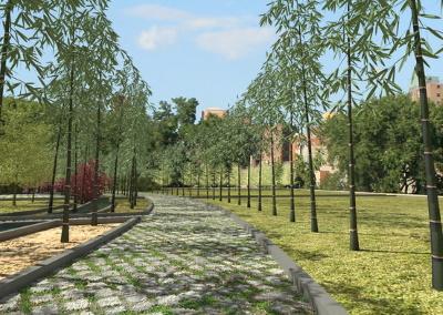 Parque de bambúes