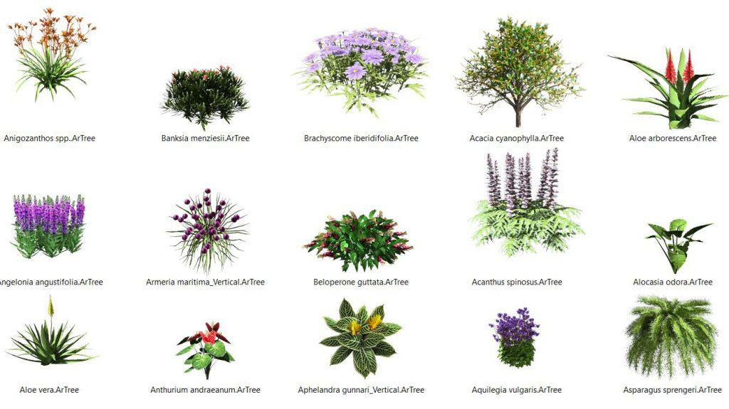 Mehrere realistische 3D-Modelle von Pflanzen aus der Lands-Design-Datenbank für Pflanzenarten.
