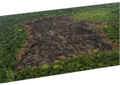 El 21 de marzo es el Día Internacional de los Bosques, para destacar la importancia de la conservación y reproducción de los bosques. Hay muchos proyectos que requieren modelar bosques. Con Lands Design puede modelar un bosque existente o crear uno nuevo que se tiene previsto cultivar. Modelar un bosque requiere 2 elementos básicos: Terreno […]