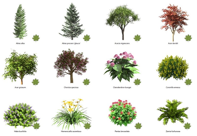 New Plants available in Lands Design plant database