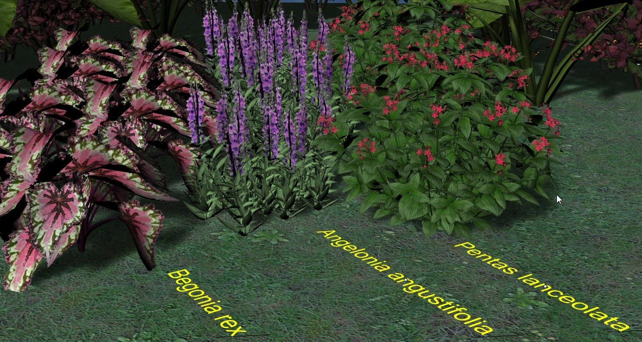 The realistic models of some of summer flowers in Lands Design (no render applied)
